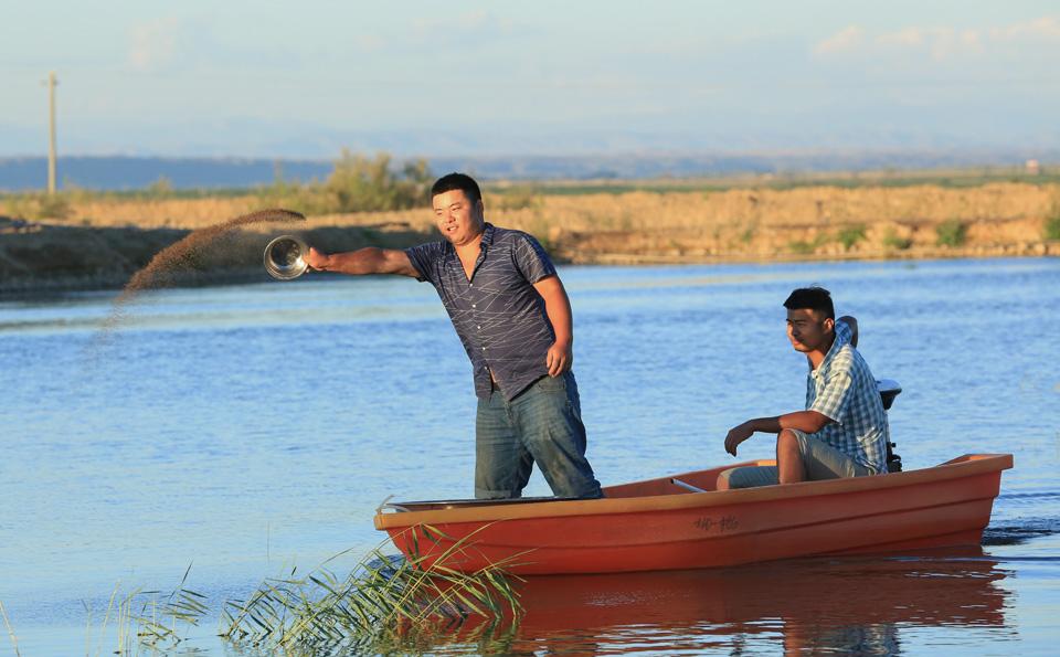 特色水产养殖助增收