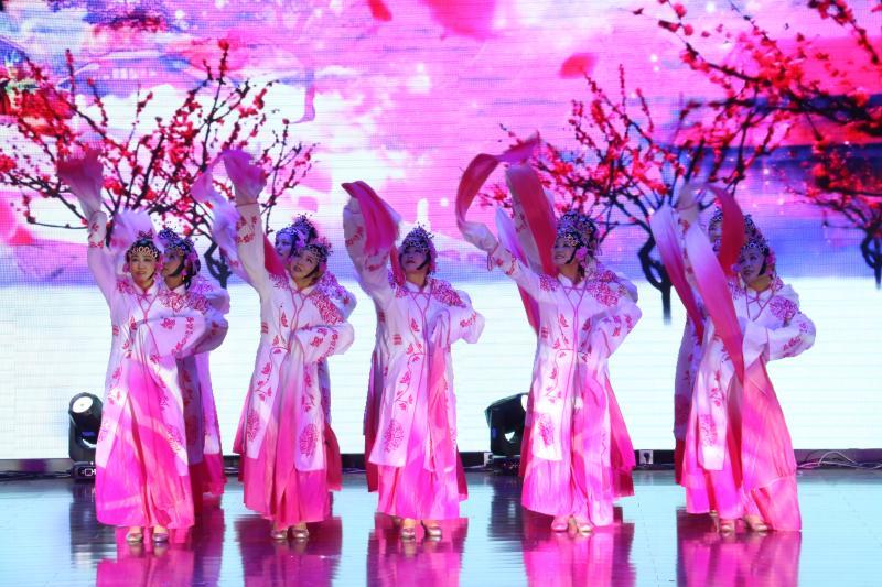 七师胡杨河市2020年春节联欢晚会剪影