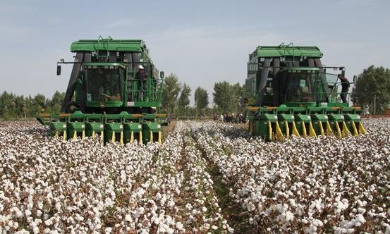 六师共青团农场跻身第二批国家农业绿色发展先行区