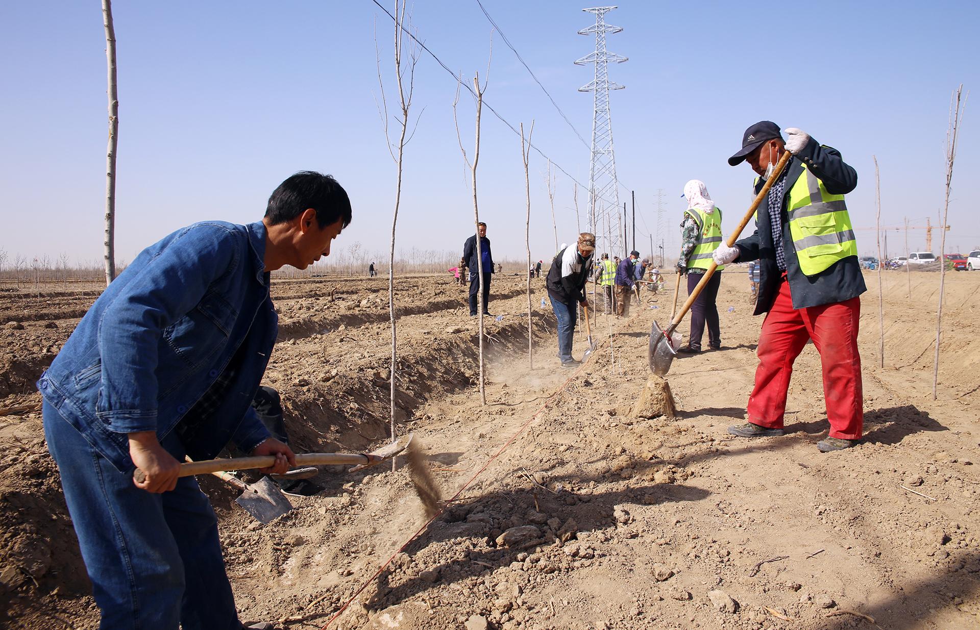 一二九团开展春季义务植树造林活动