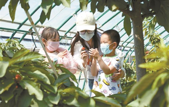 发展特色农业 助推乡村振兴