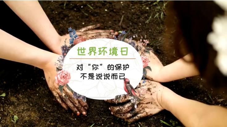 """世界环境日丨对""""你""""的保护,不是说说而已"""