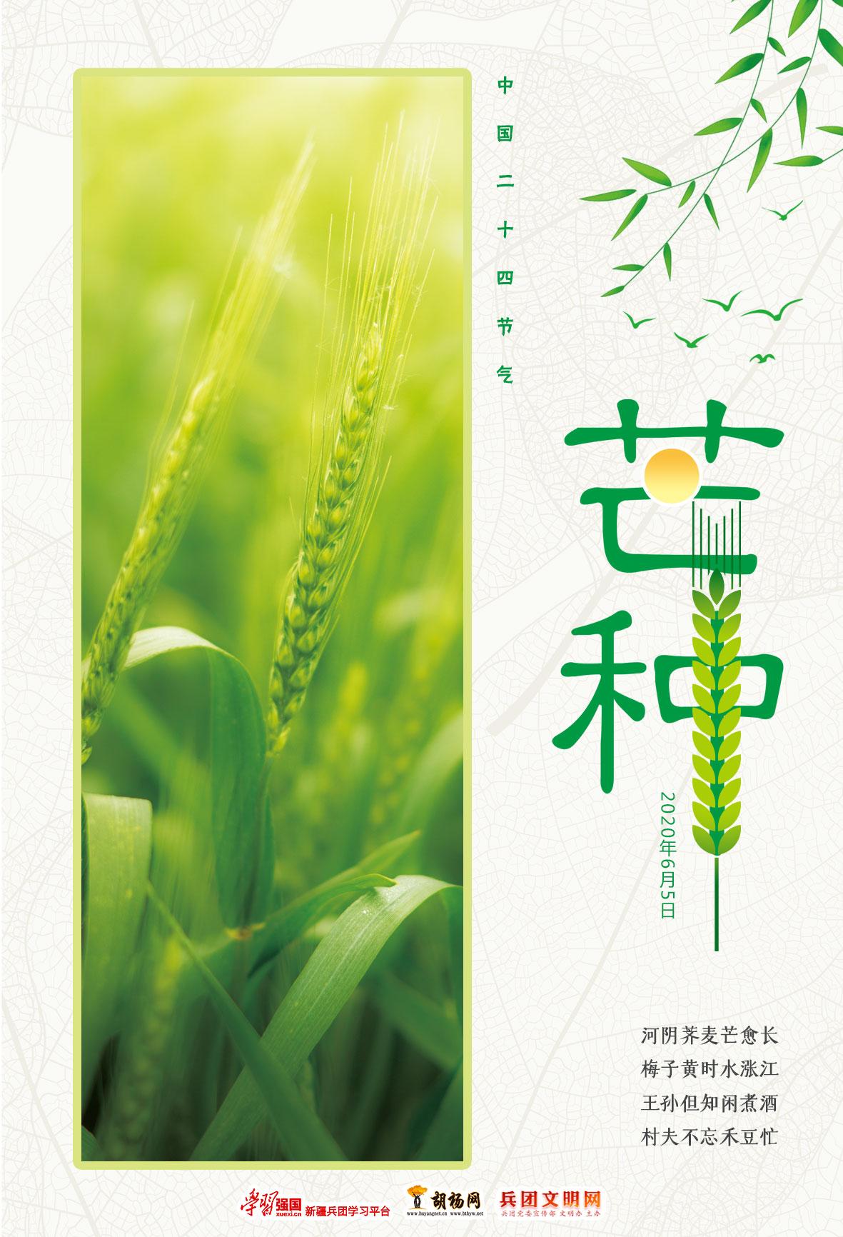 中国二十四节气 | 芒种