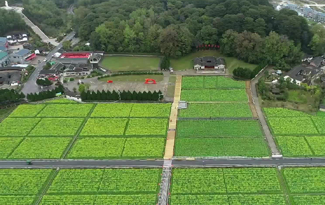 China From Above | Gutian Conference Site