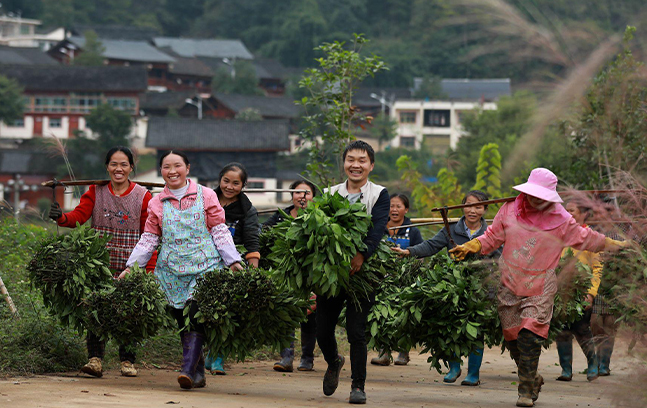 China lifts 770 million rural people out of poverty: white paper