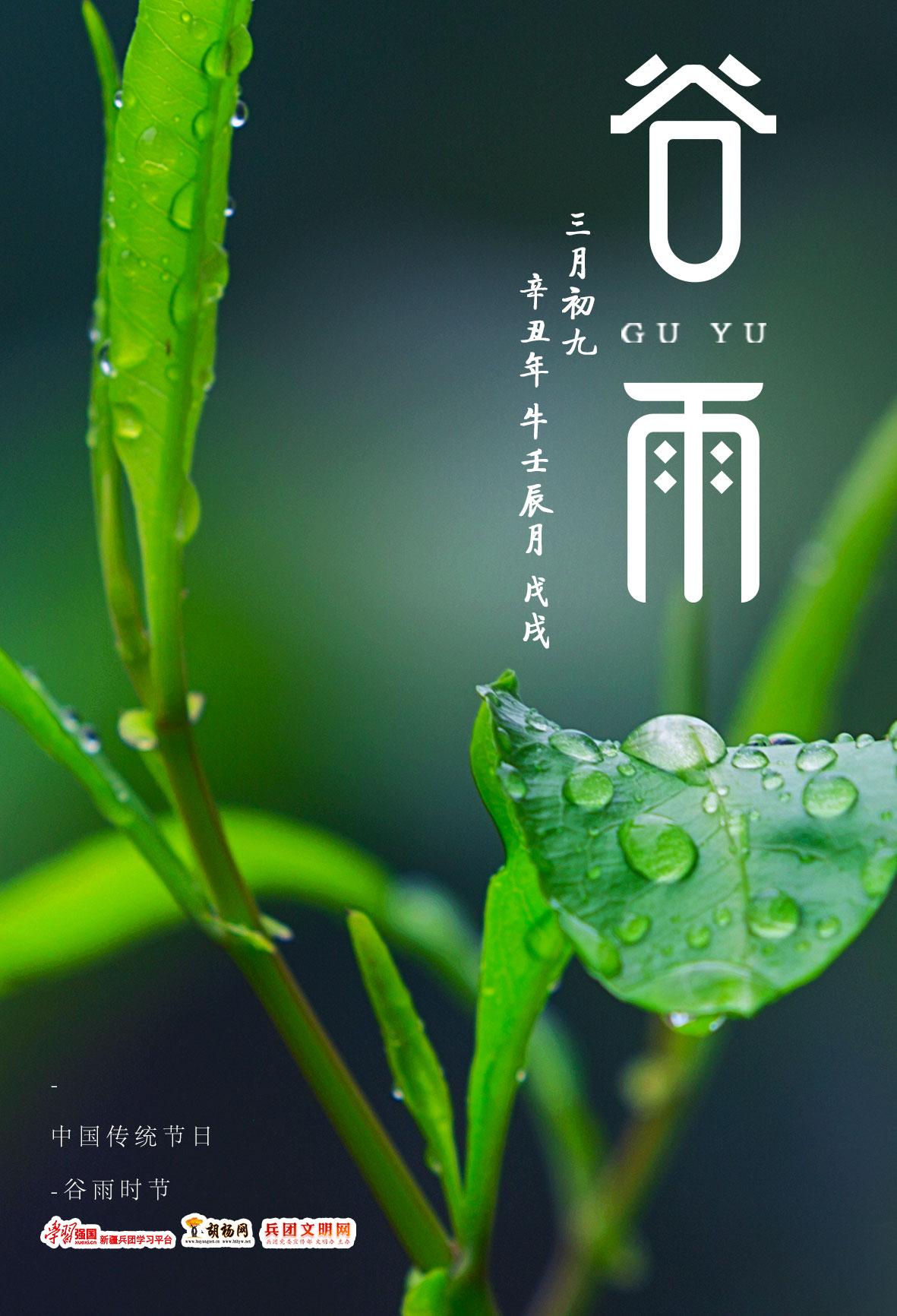 胡杨原创   谷雨
