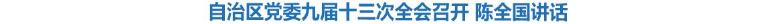 自治区党委九届十三次全会召开 陈全国讲话